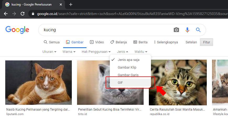 cara mencari gambar gif di google